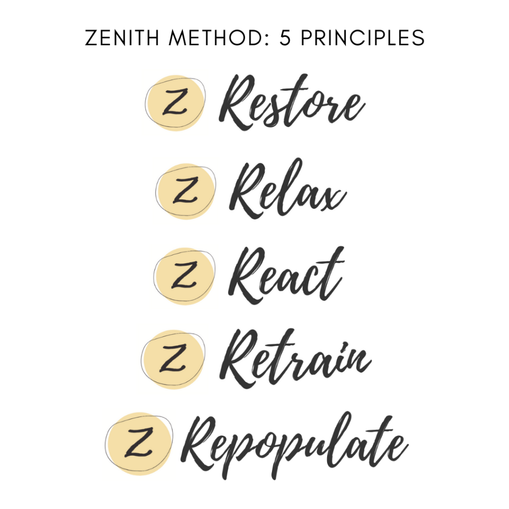 Zenith Method 5 principles